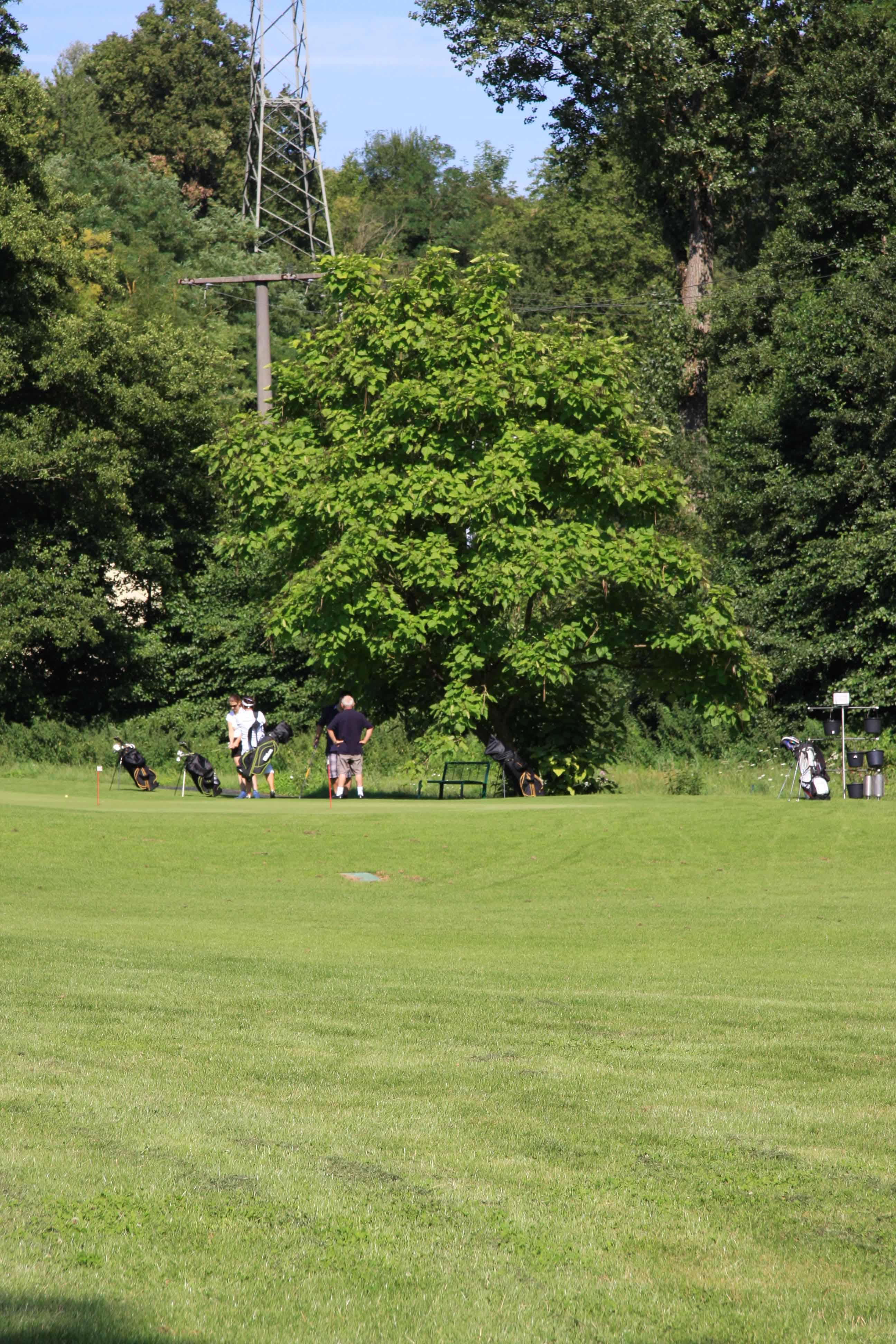 Golf Schnupperkurs buchen